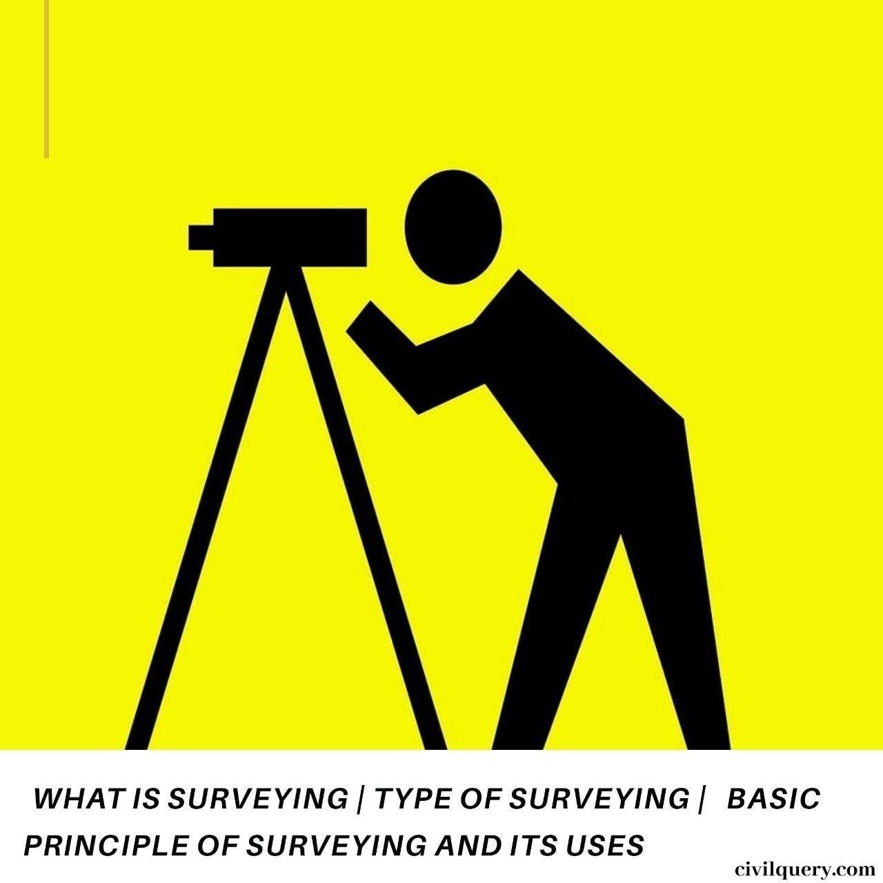 What is surveying